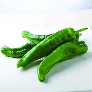 孕妇能吃尖椒吗?