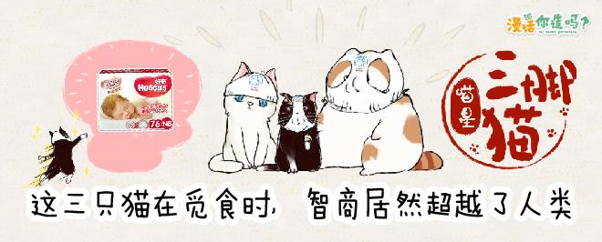三脚猫 好奇